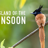 IslandoftheMonsoon_Thumb_1920x1080-1024x