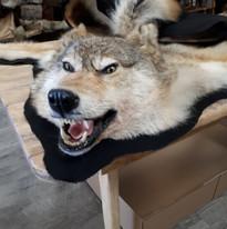 tapis de loup/wolf rug