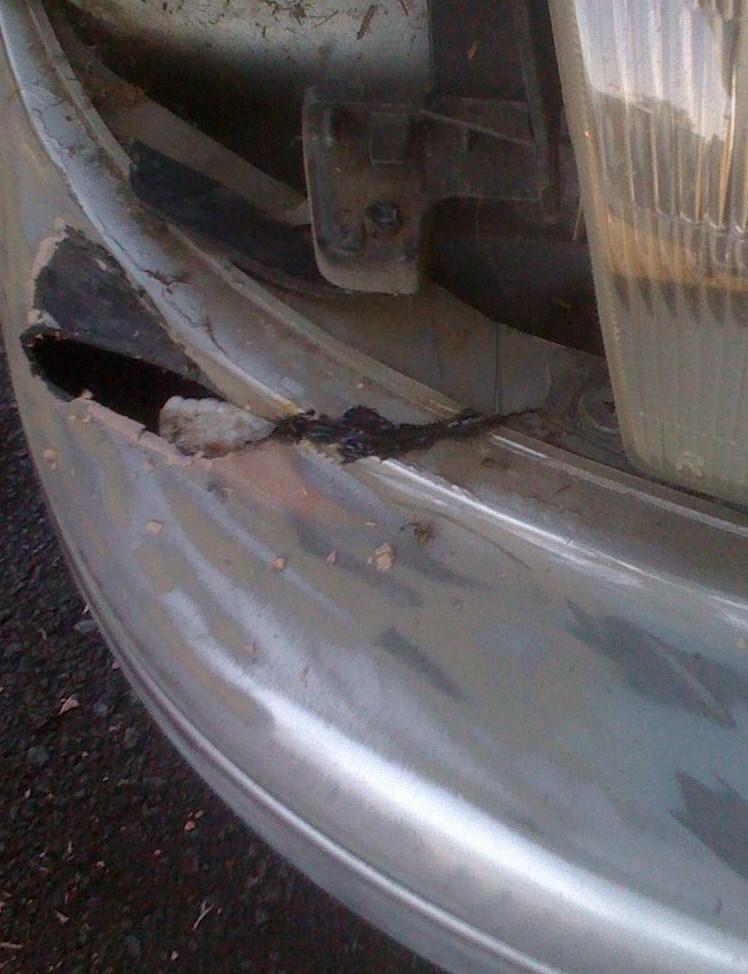 bumper - before