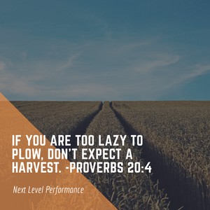 if you are too lazy to plow don't expect a harvest. proverbs 20:4