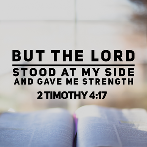 but the lord stood at my side and ave me strength 2 timothy 4:17
