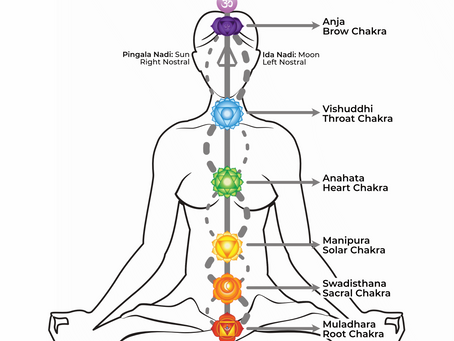 Intro into the Chakra System: Blossoming from the Inside Out.
