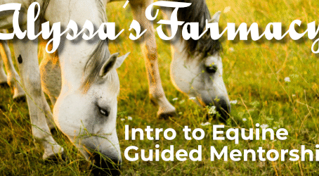 Alyssa's Farmacy
