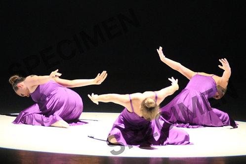 Gala2019-14