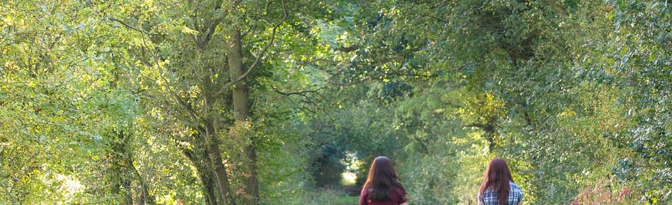 Two girls ride horse bare back away from the camera down a leafy autumn lane..jpg