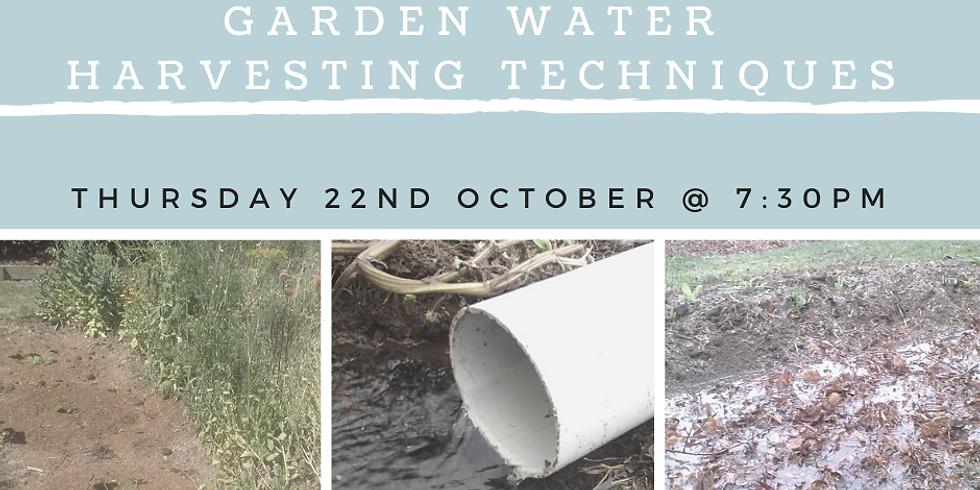 Garden Water Harvesting Techniques