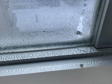 Condensation on windows.