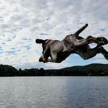 She can fly..