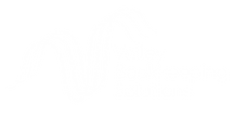 VBS Logo Transparent White.png