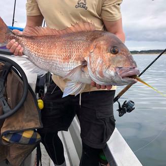 Nice catch.