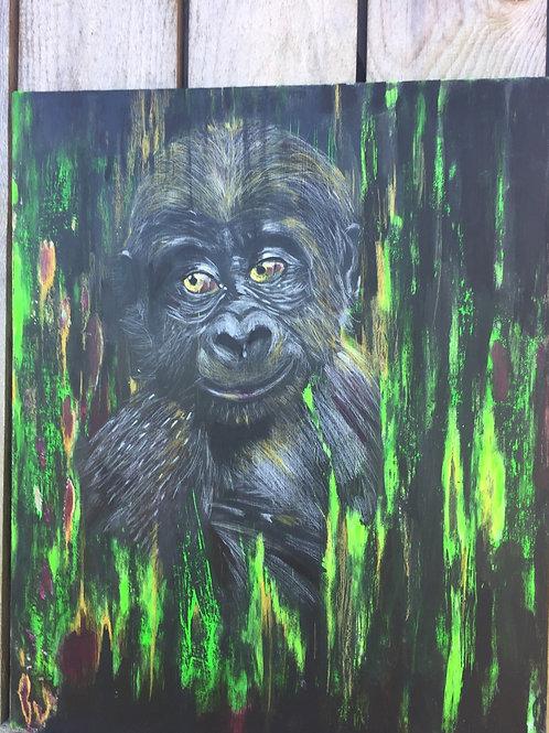 Le jeune gorille