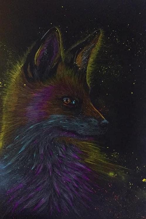 Le renard en couleurs