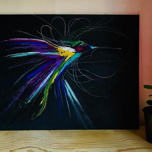 N•1 Le colibris en couleurs
