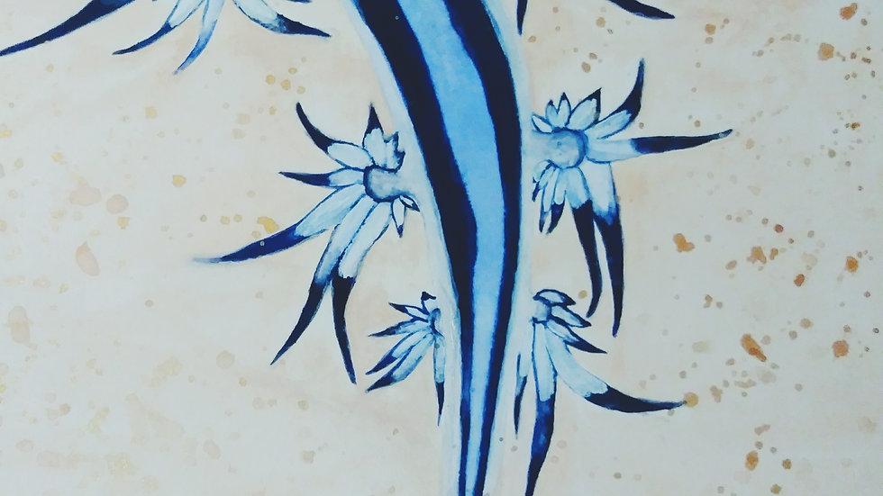 Angel Mollusk