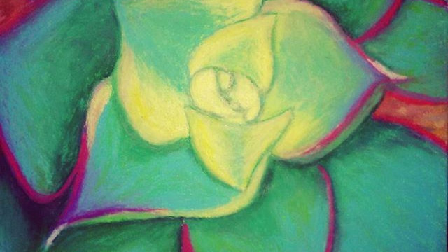 """The Desert Lotus"""