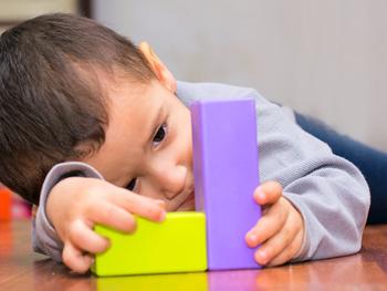 Pesquisa utiliza minicérebros para entender o autismo