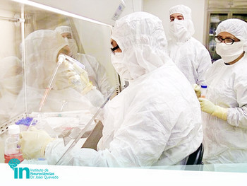 Transtorno Bipolar: pesquisa investiga células-tronco como tratamento