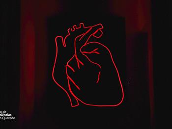 Depressão e Cardiopatias