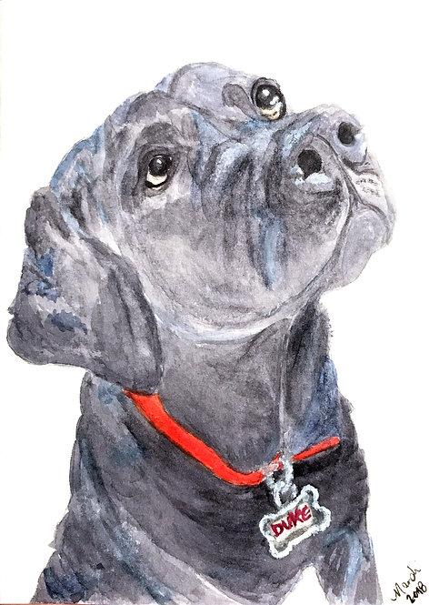 Custom pet portrait - watercolor - 5x7