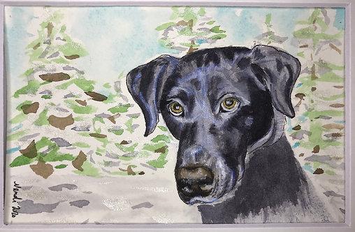 Custom pet portrait - watercolor - 8x10
