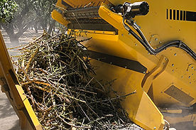 Stick-and-Debris-removal-pic-400x265-1.j