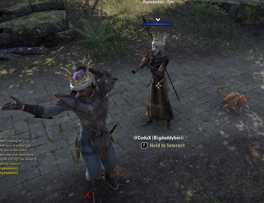 Amnesty Guild Elder Scrolls Online Dancing 2