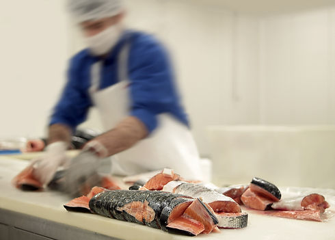 Salmon Factory.jpg