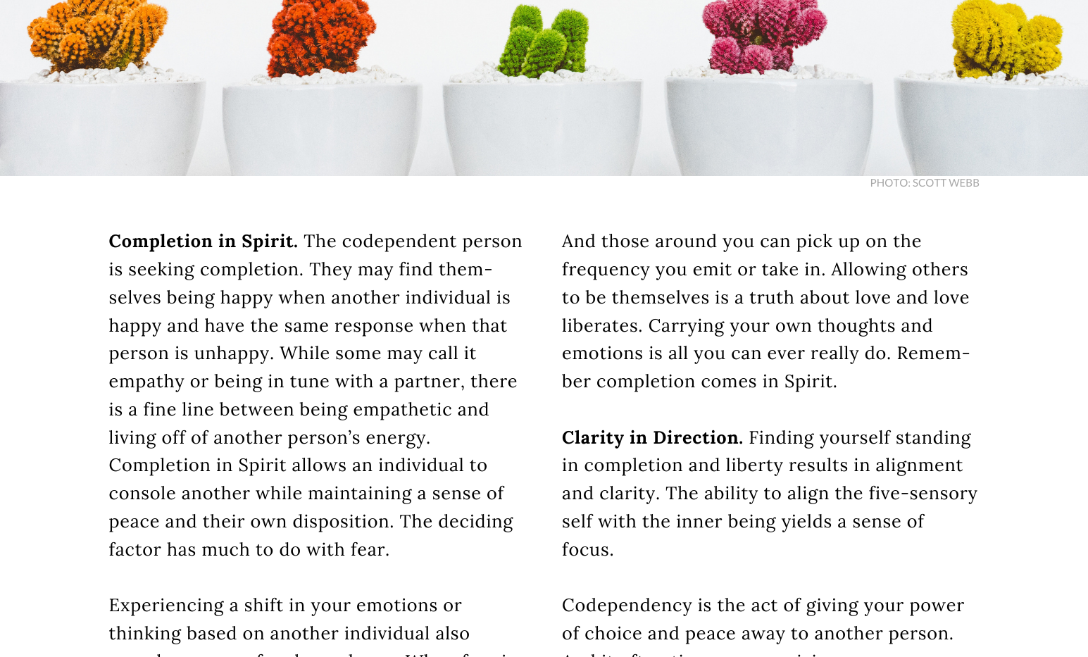 Curated, A TJM Publication - Codependency cont.