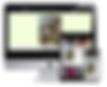 Screen Shot 2020-05-07 at 10.57.52 AM.pn