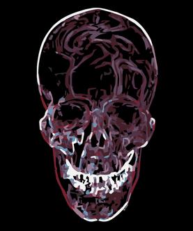 ici_skull_fragmented_1pix1_black.png