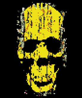 ici_skull_fragmented_1pix1_27a_black.png