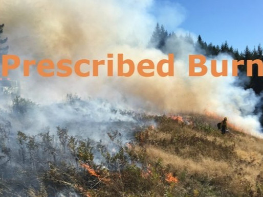 Forest Service 'Prescribed Burn' May Disrupt Traffic on KY 192 in Laurel County