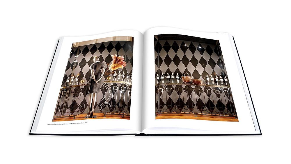 Louis Vuitton Windows Book