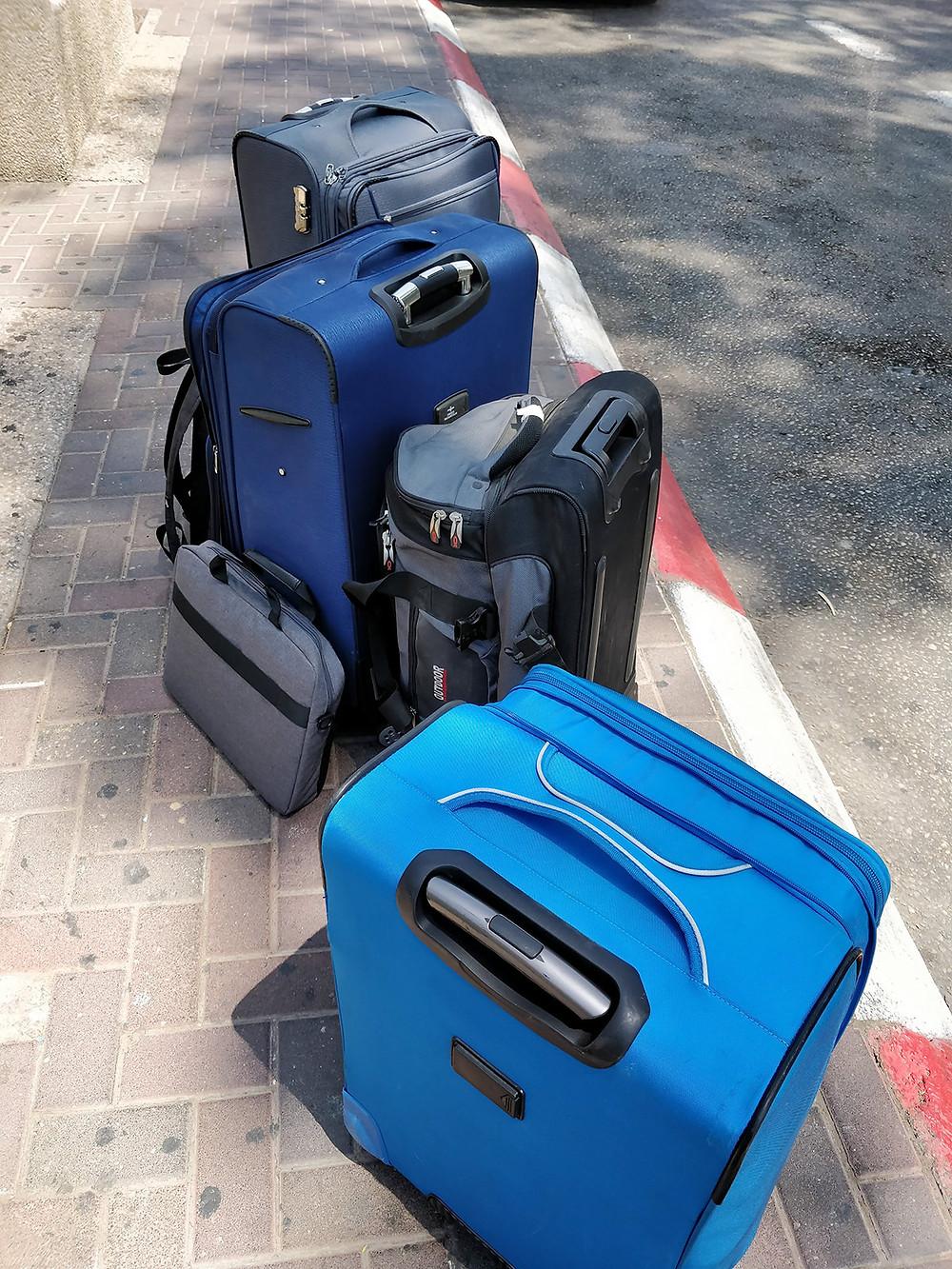 לא בפריים - עוד מזוודה, כלב וכלוב טיסה