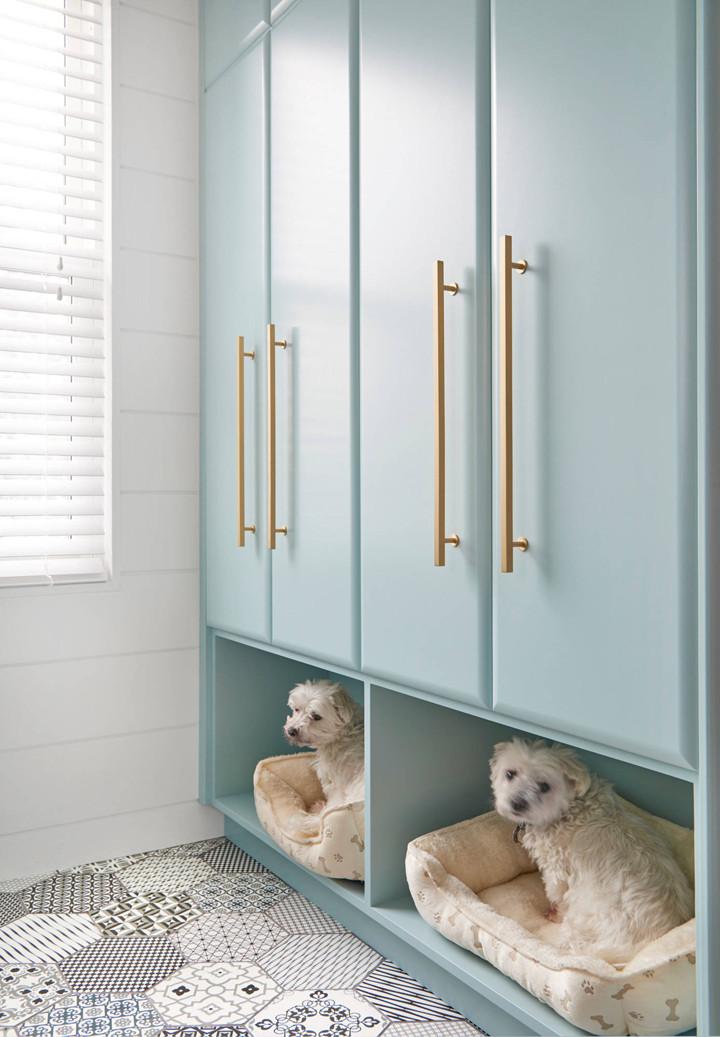 מיטה לכלבים בחדר הכביסה