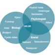 Årsaker til smerte - den biopsykososiale modellen