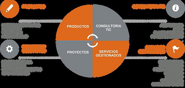 Setesca TIC Setesca Service BPO Planes Director