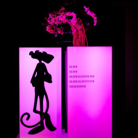 AIM I Pink Panther Soiree I 2017