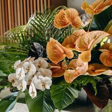 Bar Floral