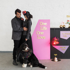 Bright Dogs at Weddings Styled Shoot I 2018