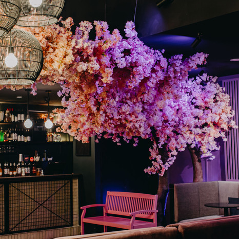 Goody Two's Cherry Blossom Installation 2020