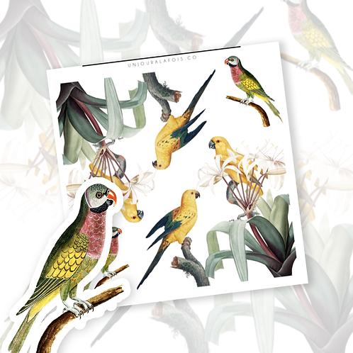 Oiseaux    4 autocollants   #89