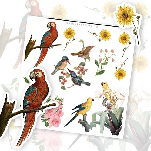Oiseaux et fleurs || 11 autocollants | #59