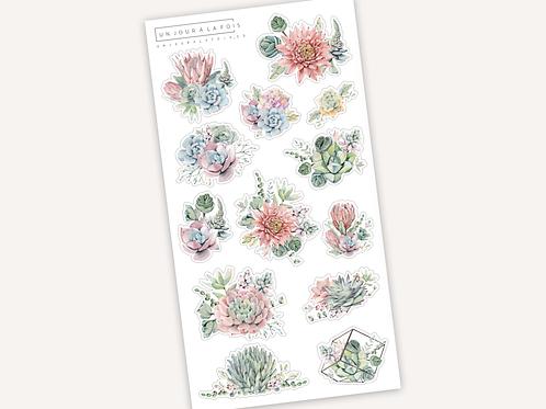 Succulentes || 13 autocollants
