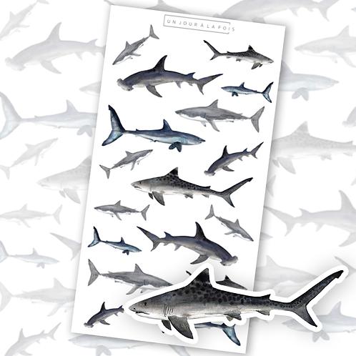 Requins || 17 autocollants