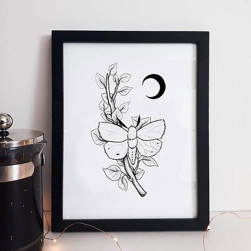 Affiche minimaliste papillon de nuit & lune