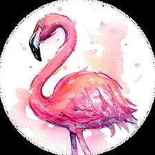 8_Розовый_фламинго.png