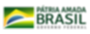 logo-patria-amada-brasil-horizontal.png