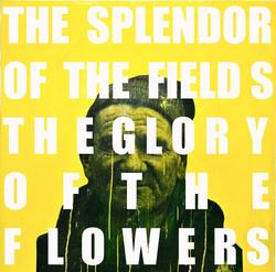 THE SPLENDOR OF THE GLORY