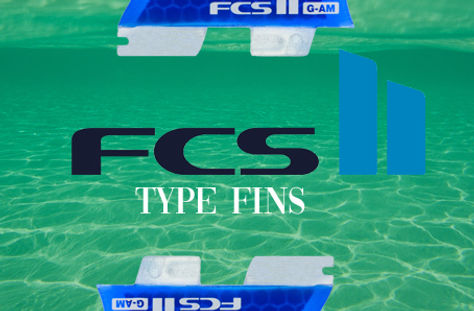 FCS 2 TYPE BUTTON.jpg